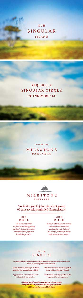Milestone Partner Appeal Collateral